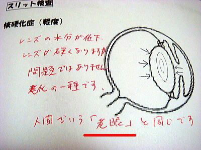 DSC04922-1.jpg